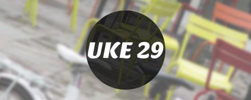 Ukemeny | Uke 29 | 2015 | Kokebloggen
